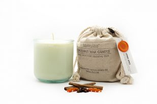 COCONUT WAX CANDLES - CITRUS SPICE {large glass}