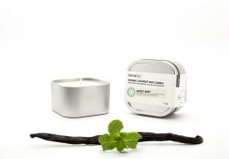 COCONUT WAX CANDLES - SWEET MINT {travel tin}